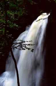 Not So Dry, Dry Falls